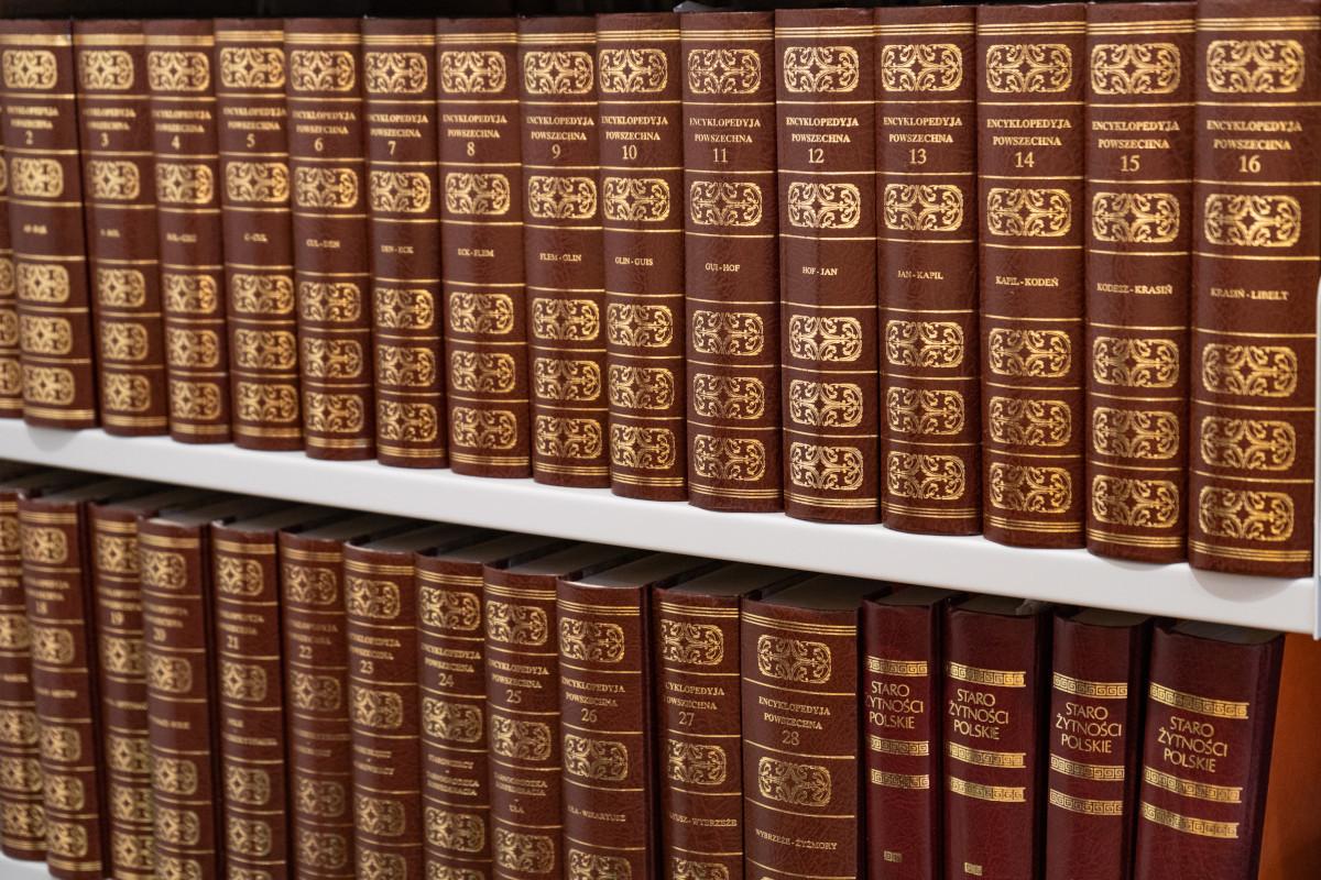 Biblioteczny katalog online